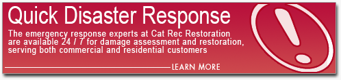Quick Damage Restoration Disaster Response